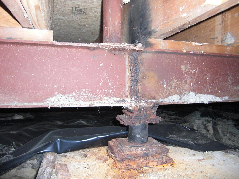 forensic-steel column